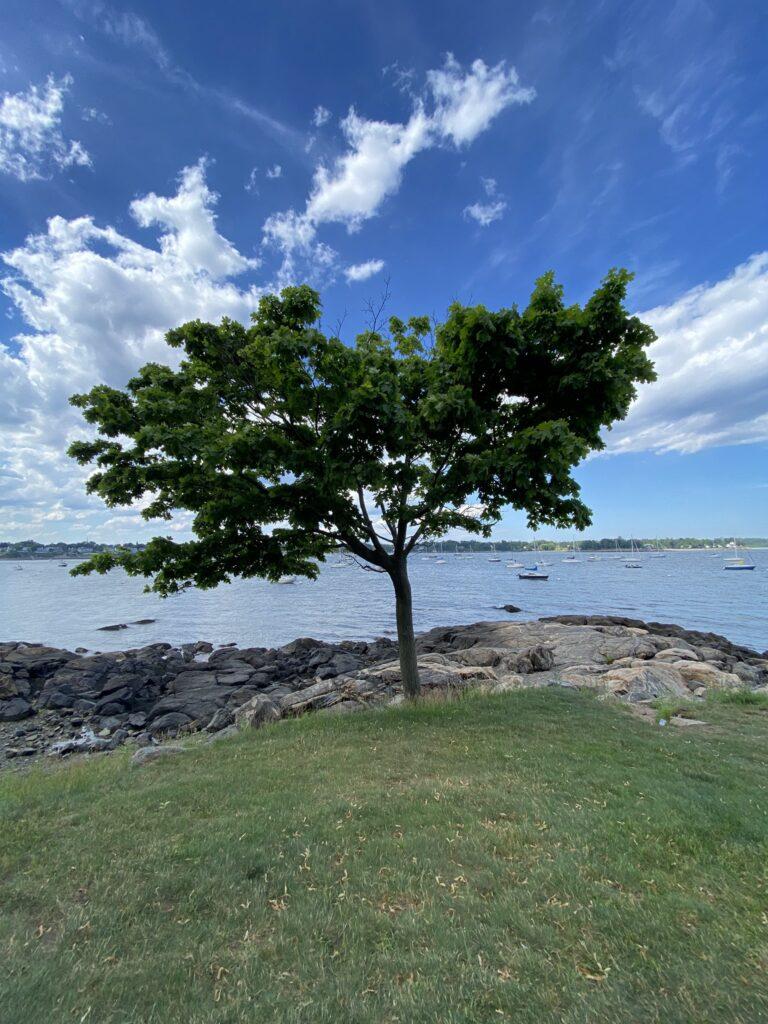 City Park at Harbor in Salem MA